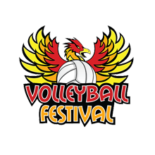 The Volleyball Festival