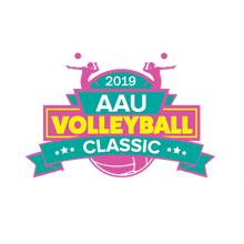 Disney Volleyball Classic