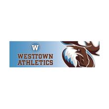 Westtown v. MFS