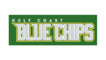 Gulf Coast Blue Chips