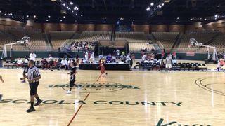 All Ball Elite  defeats GR Sports , 43-27