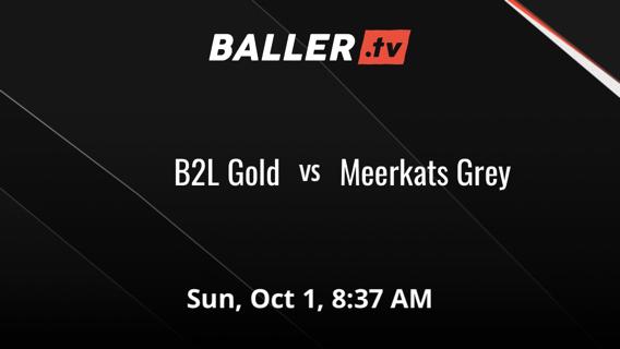 B2L Gold vs Meerkats Grey