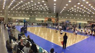 WVC 18 National (OD) (12) 2 CHVBC 18 Black (GE) (44) 1