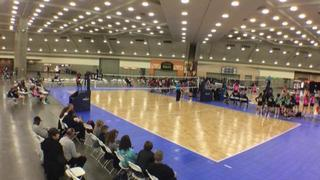 It's a wash between Ballyhoo 18 Black (KE) (21) and CHVBC 18 Black (GE) (44)